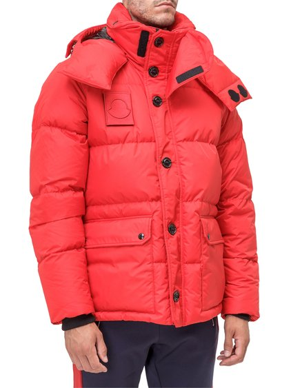 Dary Down Jacket image
