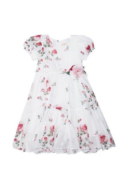 All Over Print Dress image