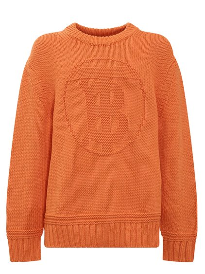 Pullover with Front Logo image